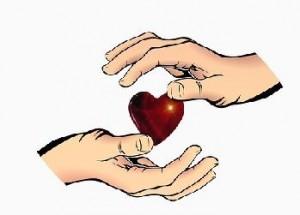 Herzkreislauftee