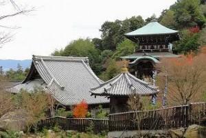 Honyama Cha Sencha
