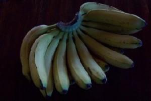 Bananentee Natur Früchtetee