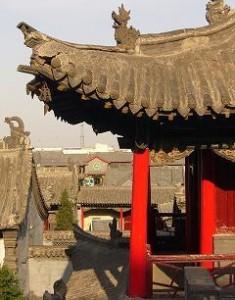 Ming Quian Wild Buds Weisser Tee