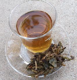 Katzenkralle Tee